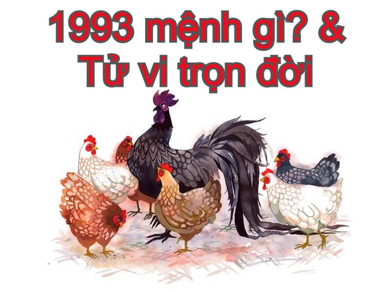 1993 mệnh gì